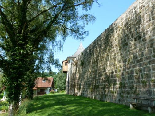 Tittmoning historische Stadtmauer