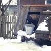 Frisches Wasser im Winter