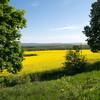 Ukrainische Landschaft im Mai