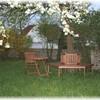 Sitzen unterm blühenden Birnbaum.