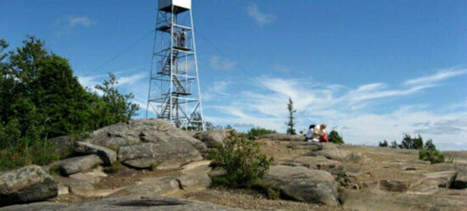 hadley-hill-fire-tower.jpg