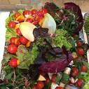 Gemüsesticks-Platte