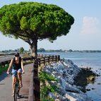Friaul und Venedig Aktivreise, Radtour im Naturschutzgebiet Isola della Cona