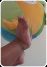 Was ist Pekip? Hier erfahren Sie alles über Baby- und Krabbelkurse. Fördern Sie Ihr Baby ohne es zu überfordern. Babyschwimmen und Babymassage von zu Hause.