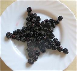 Obst und Gemüse für Kindergeburtstag kreativ schneiden und dekorieren, Tiere aus Obst legen, Wie kriegen Kinder Lust auf Obst? Tipps und Trick, wie Kinder gern Obst und Gemüse essen.