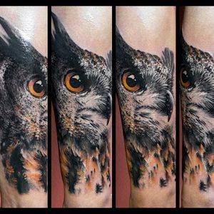 Selfmade Tattoo Berlin Zsofia Belteczky owl eule nature