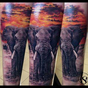 Selfmade Tattoo Berlin Zsofia Belteczky elefant elephant afrika