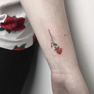 Bartek, Szulc, Selfmade, Tattoo, Berlin, Vegan, Realistic, Walkin,  rose, rosetattoo, farbe, farbig, smalltattoo