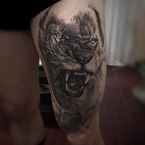 Selfmade Tattoo Berlin Kristof Tito Kondrat loewe lion animal tier nature