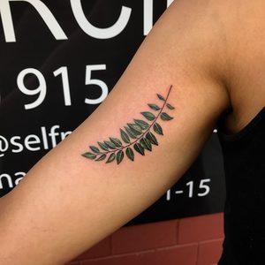 Bartek, Szulc, Selfmade, Tattoo, Berlin, Vegan, leaf, blatt, farbe, color, nature