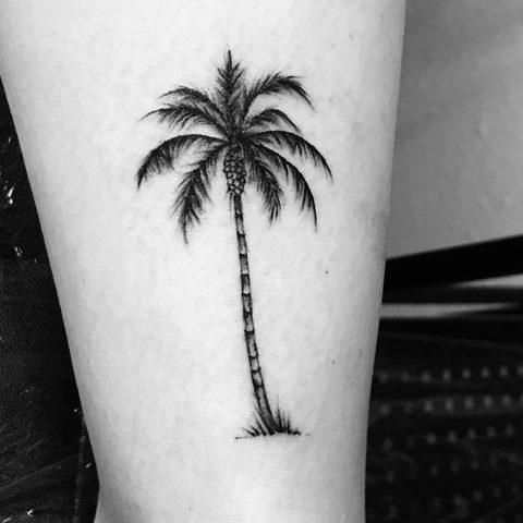 Hanna, Leah, Selfmade, Tattoo, Berlin, Vegan, Walkin, Palm, Tree, Palme, Beach