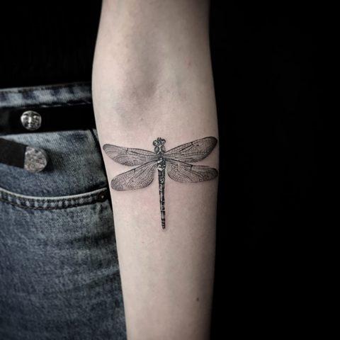 Bartek, Szulc, Selfmade, Tattoo, Berlin, Vegan, Realistic, Walkin, Libelle, Natur, Fineline, girly