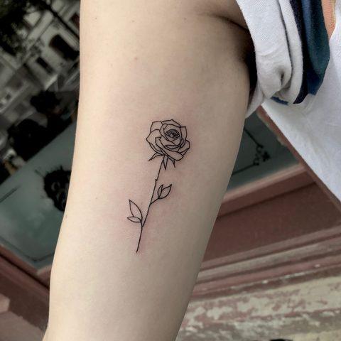 Hanna, Leah, Selfmade, Tattoo, Berlin, Vegan, Walkin, Fine, line, Rose, Line work