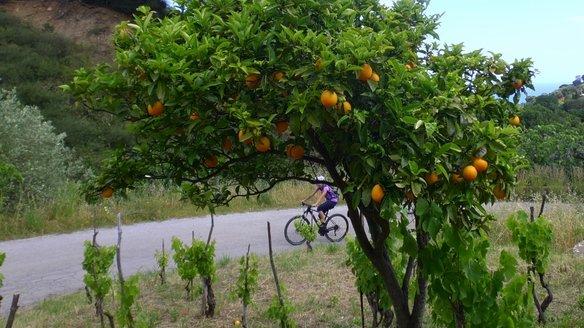 Mountainbiketour Sizilien
