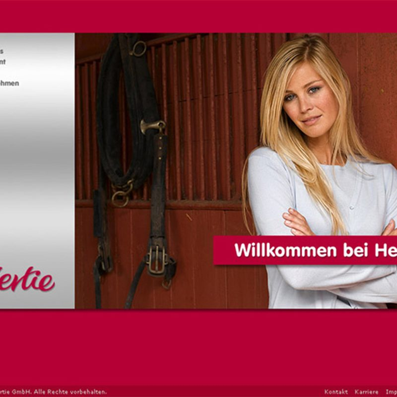 Hertie | Interimswebsite